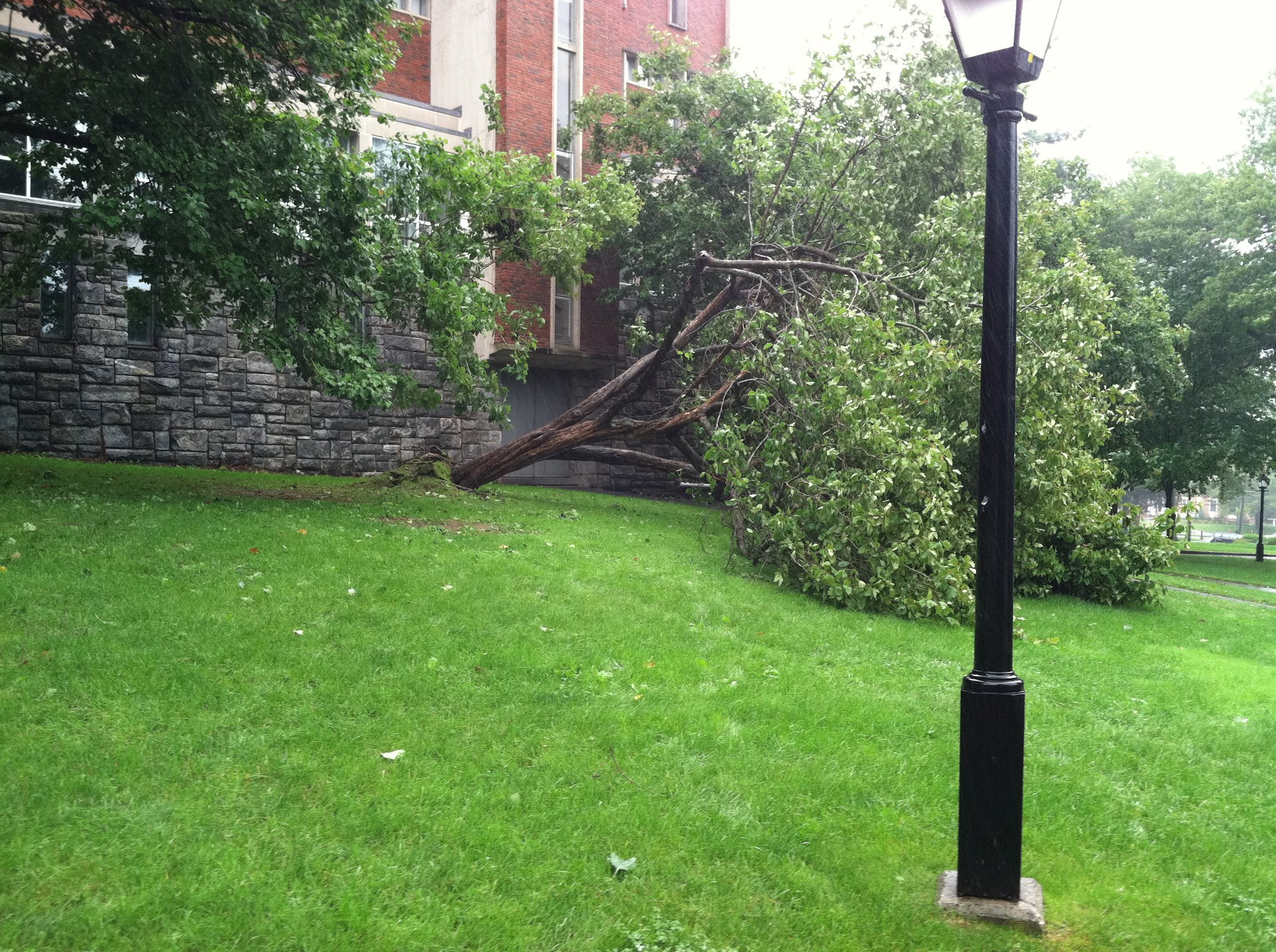 College Welcomes Hurricane Class of 2015  The Amherst Student